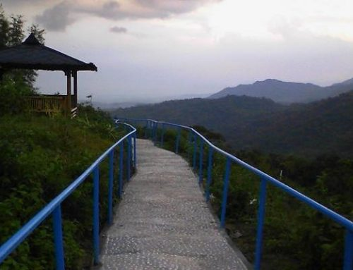 Green Village Gedang Sari, Si Permadani Hijau Kota Jogja