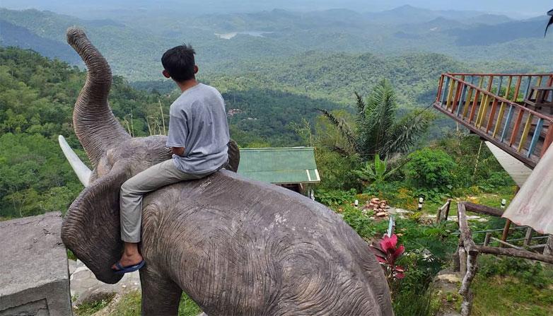 Wisata Gunung Gajah