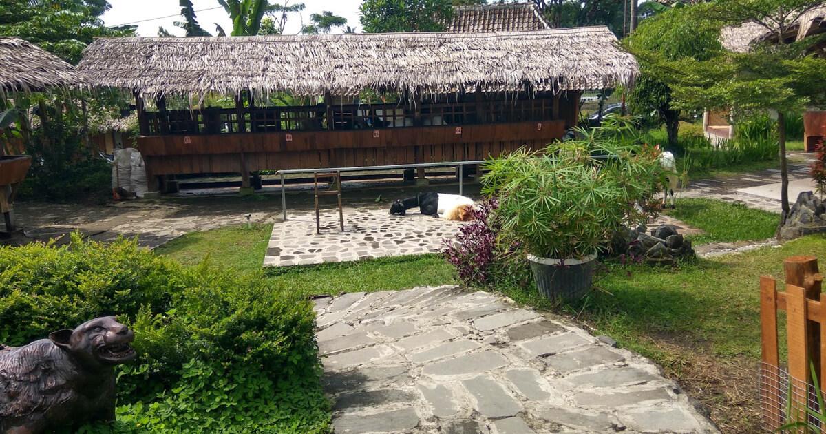 Agrowisata Bhumi Merapi Jogja